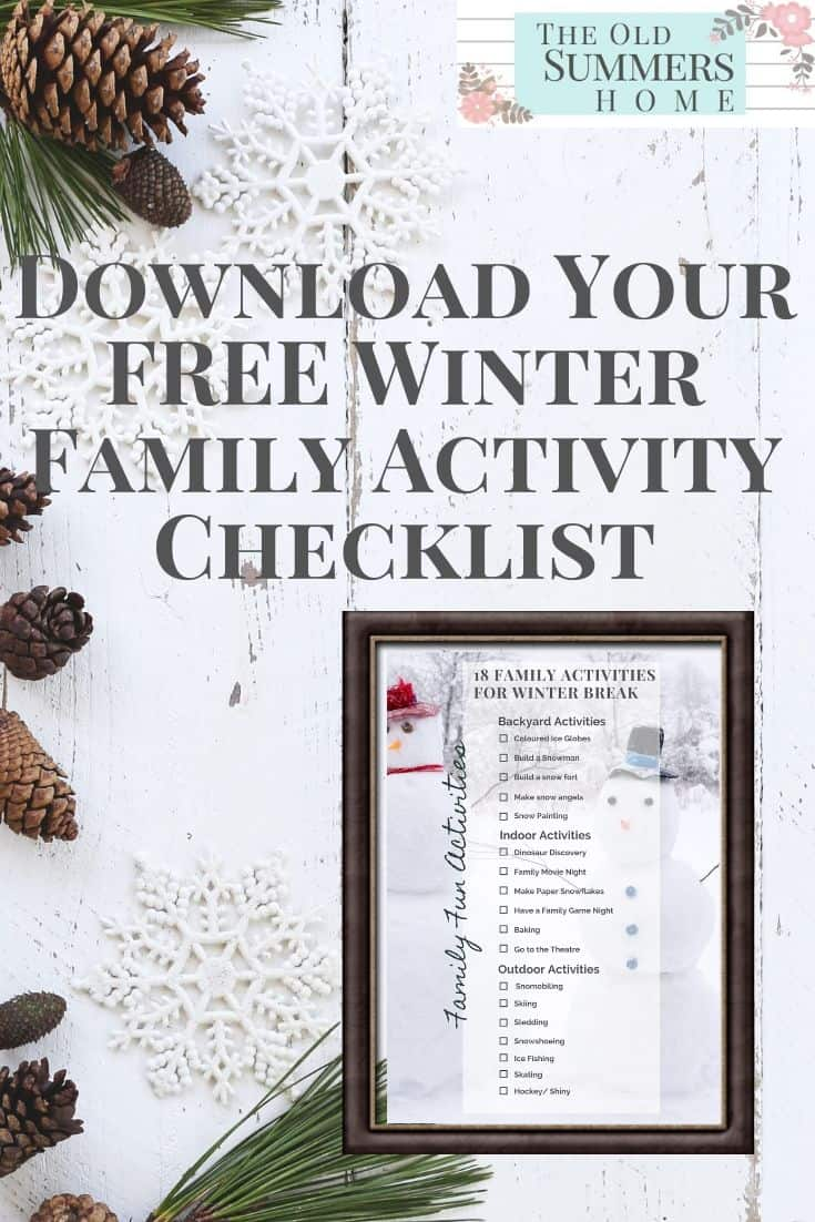 Download Your FREE Winter Family Activity Checklist