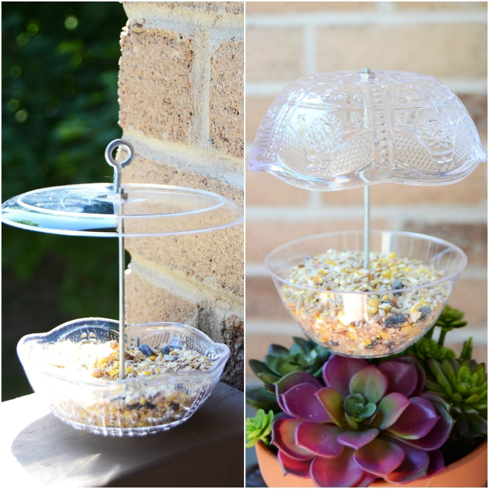 12 Easy DIY Bird Feeders to Make Today 7 Make a bird feeder The Old Summers Home Creating a space that's inviting to birds isn't hard to do. Simply provide food and the birds will come. Make one of these 12 easy DIY bird feeders today!