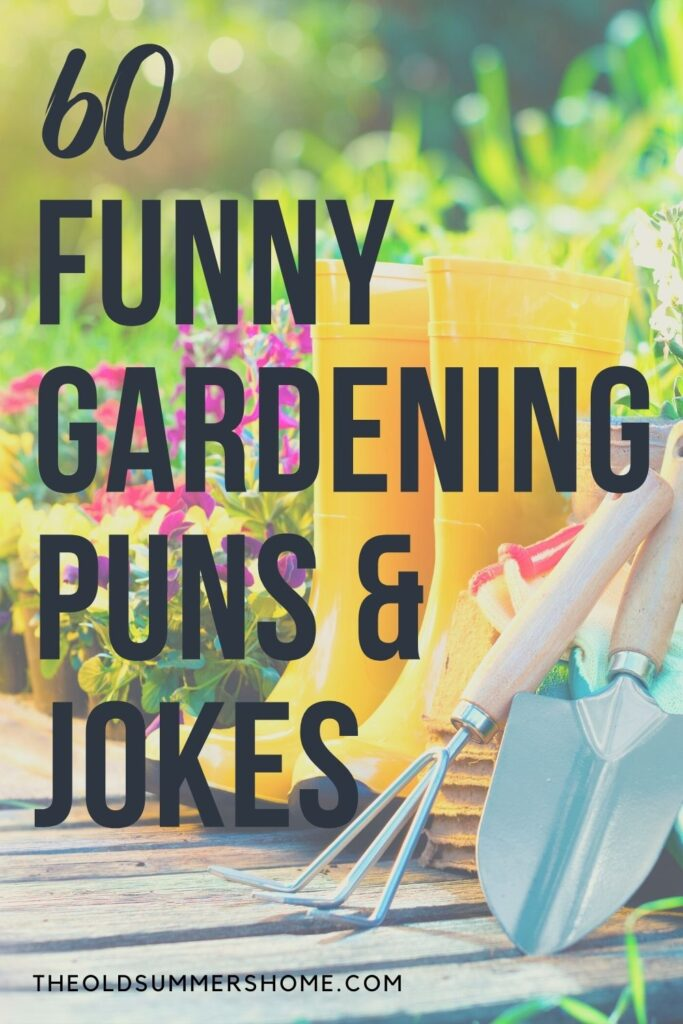 60 Funny Gardening Puns and Jokes 1 funny gardening puns and jokes The Old Summers Home This list of funny gardening puns and jokes is a rose amongst thorns. We're not going to beat around the bush, you'll be as busy as a bee telling these jokes!