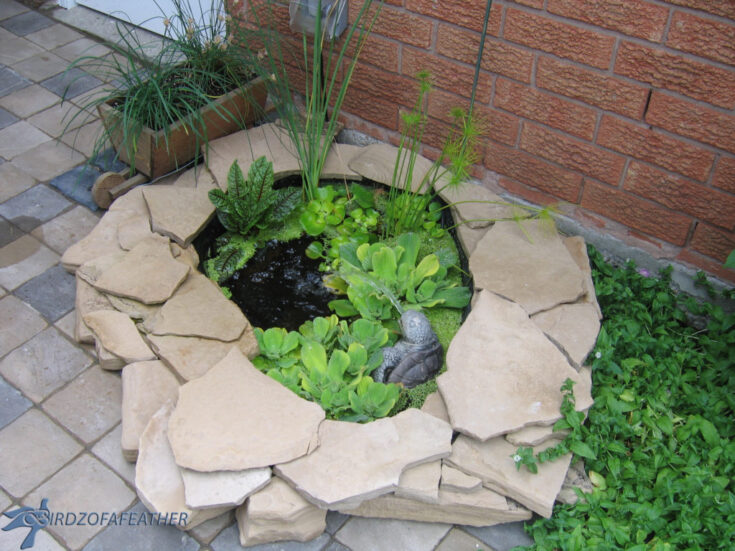 Beautiful Landscaping Ideas for Front of House 3 5C67EA7E 0F83 4159 91DE 6E986529D3CA 1024x768 1 The Old Summers Home We've gathered up loads of simple landscaping ideas to inspire and motivate you. Dust off your work gloves because you're going to want to implement several