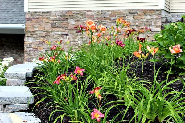 Beautiful Landscaping Ideas for Front of House 2 daylilies care The Old Summers Home We've gathered up loads of simple landscaping ideas to inspire and motivate you. Dust off your work gloves because you're going to want to implement several